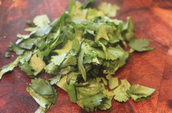 Cilantro Forage Box - Copy