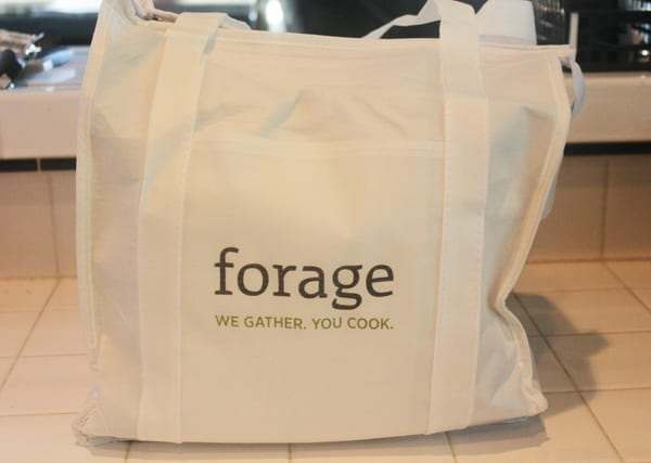 Forage Box Bag - Copy
