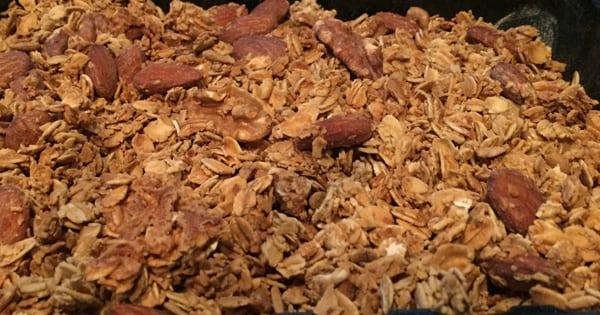 hearty granola fresh n lean
